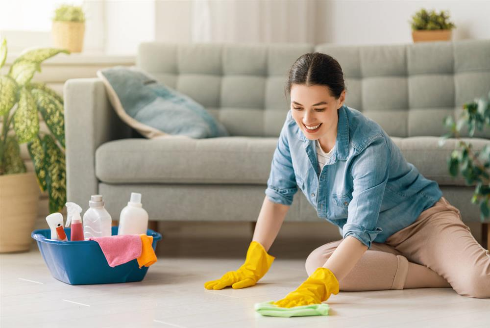 House Cleaning Alameda